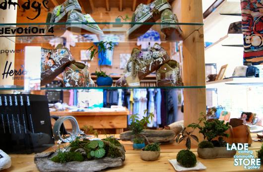 那須の盆栽